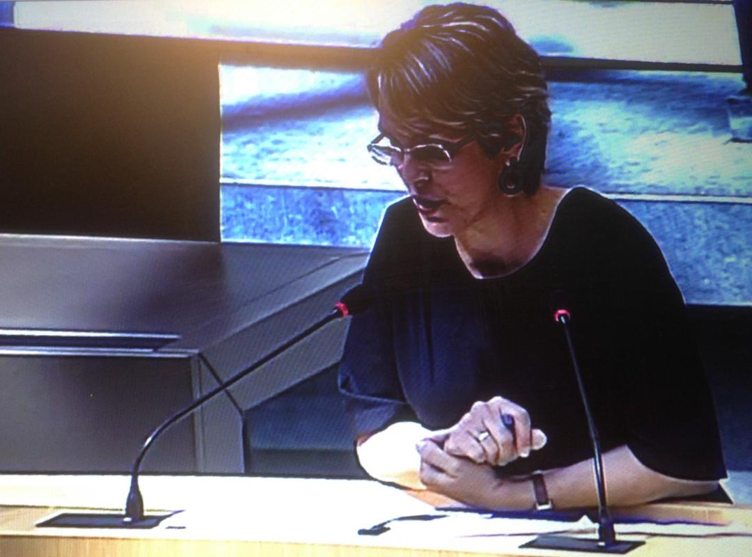 Plenaire zitting 5 juli 2017
